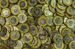 L'argent polonais invente 2zl - fond Images stock