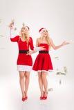 L'argent tombé autour des soeurs enthousiastes jumelle la position et le sourire Image stock