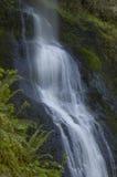 L'argento cade parco di stato Oregon fotografia stock