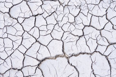 L'argilla incrinata Immagine Stock
