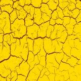 L'argilla incrinata ha frantumato nel periodo di siccità Fotografie Stock