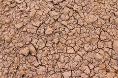 L'argilla incrinata ha frantumato nel periodo di siccità Fotografia Stock Libera da Diritti