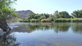 L'Arizona, il fiume Salt, vista di A che guarda a monte sul fiume Salt con gli alberi e una montagna video d archivio