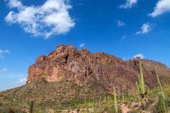 L'Arizona, région sauvage de montagne de superstition, traînée de Néerlandais, image stock