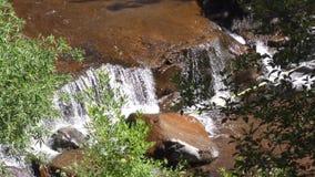 L'Arizona, roche de glissière, bourdonnement d'A dedans sur une petite cascade sur la crique de chêne près de la région de roche  clips vidéos