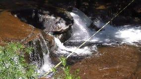 L'Arizona, roche de glissière, mouvement d'appareil-photo d'A le long de la petite cascade sur la roche proche de glissière de cr banque de vidéos
