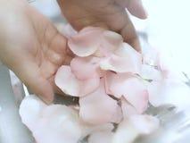 L'aromaterapia con è aumentato Fotografia Stock
