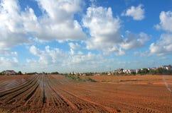 L'arroseuse irriguée nouvellement a planté le champ avec le ciel bleu et les nuages Photos libres de droits