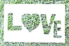 L'art de brocoli, écrivent l'amour Photos stock