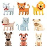 L'arte del pixel pets le icone 8 vettori dei cani e dei gatti del bit Immagine Stock