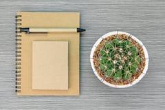 L'articolo di cartoleria ed il cactus di Brown, conservano il concetto del pianeta Fotografie Stock