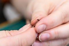 L'artisan insère un fil dans l'oeil d'une aiguille photographie stock libre de droits