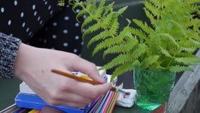 L'artista dipinge i colori colorati nella natura stock footage