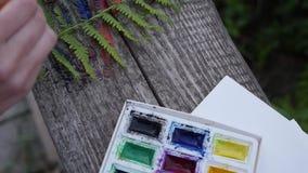 L'artista nella natura dipinge la felce verde stock footage