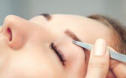 L'artiste de maquillage plume ses sourcils d'une jeune femme dans un salon de beauté images libres de droits