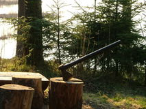L'ascia ha incuneato nel ceppo di albero fotografie stock