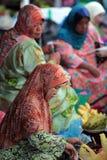 L'ASIA BRUNEI DARUSSALAM Fotografie Stock Libere da Diritti