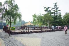 L'Asia Cina, Pechino, osso di ŒDinosaur del ¼ del ï del parco di Taoranting fotografie stock libere da diritti