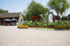 L'Asia parco di Cina, Pechino, Beihai, letto di fiore del paesaggio Fotografia Stock Libera da Diritti