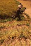L'ASIA SUD-EST ASIATICO LAOS VANG VIENG LUANG PRABANG Fotografia Stock