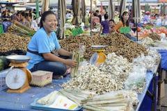 L'ASIA TAILANDIA ISAN AMNAT CHAROEN Fotografie Stock Libere da Diritti