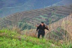 L'asiatico con il bastone di bambù è su fondo dei terrazzi del riso. Fotografie Stock
