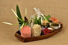 L'asiaticum de Crinum, gel vert de feuilles ont la médecine de propriété Images stock