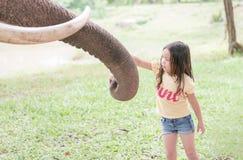 L'Asiatique mignon apprécient à l'éléphant de alimentation photographie stock libre de droits