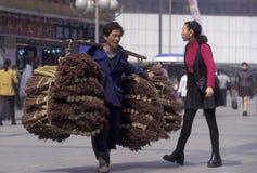L'ASIE CHINE CHONGQING Image libre de droits