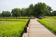 L'Asie Chine, Pékin, Forest Park olympique, traînée de ŒWooden de ¼ d'architectureï de paysage photo stock