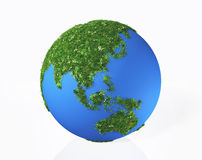 L'Asie est couverte par l'herbe et les fleurs Images libres de droits