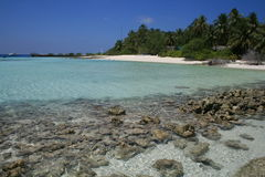 l'Asie, récif coralien Maldive et chez Asdu Images stock