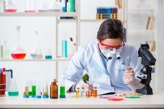 L'assistente di laboratorio nel concetto di sintesi della droga Immagine Stock Libera da Diritti