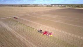 L'associazione di vista aerea raccoglie le patate sul grande campo stock footage
