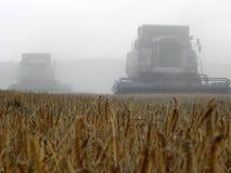 L'associazione falcia l'erba nel campo dell'estate Raccogliendo dopo la stagione estiva Dettagli e primo piano fotografia stock libera da diritti