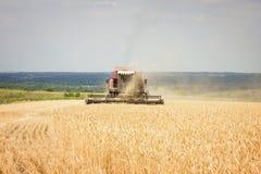 L'associazione falcia il giacimento di grano, raccolto fotografia stock