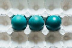 L'assortiment de couleur différente, frais, poulet eggs à un arrière-plan gris de plateau photographie stock libre de droits