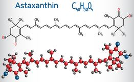 L'astaxantina è un cheto-carotenoide Appartiene a classe di chemica Immagini Stock