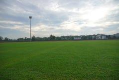 L'athlétisme artificiel avec l'herbe verte a combiné avec l'herbe artificielle images stock