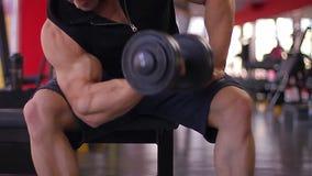 L'atleta pesante maschio che fa il bicipite si esercita con le teste di legno, allenamento in palestra stock footage