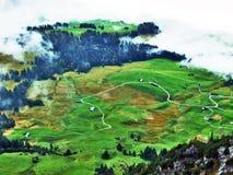 L'atmosphère d'automne sur des pâturages et des collines dans le Thur River Valley photos stock