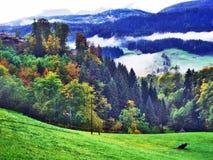 L'atmosphère d'automne sur des pâturages et des collines dans le Thur River Valley images libres de droits