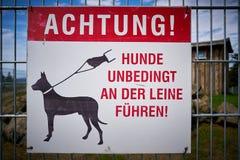 L'attention, gardent des chiens sur une laisse photographie stock libre de droits
