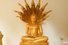 L'attitude de la méditation Image libre de droits