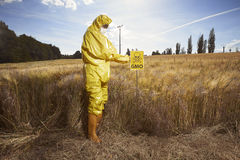 L'attivista che protesta contro i cereali geneticamente modificati si avvicina al campo Fotografia Stock