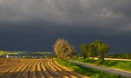 L'attività di una tempesta Fotografie Stock Libere da Diritti