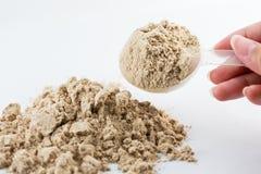 L'aumento della mano un cioccolato in polvere del proteina del siero di misura del cucchiaio per Fotografia Stock Libera da Diritti