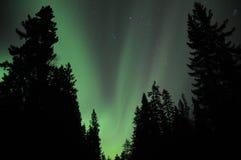 L'aurore au-dessus du forestNorway photographie stock libre de droits