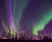 L'aurore de l'Alaska Photo libre de droits