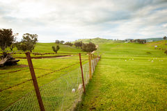 l'australia Fotografia Stock